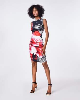 Nicole Miller Giant Garden Lauren Sheath Dress
