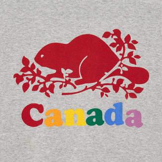 Roots Mens Cooper Colours Canada T-shirt