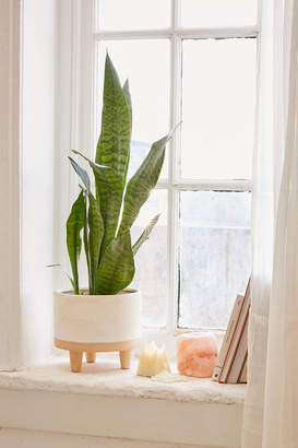 "Urban Outfitters Liv 8"" Footed Planter"