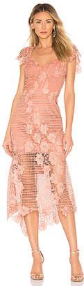 Bardot Lucy Lace Dress