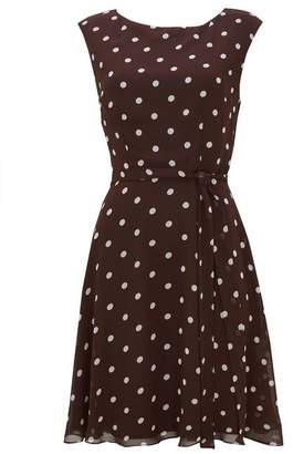 Wallis Brown Polka Dot Fit and Flare Dress