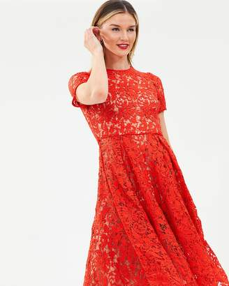 Cooper St Snapdragon Fit & Flare Lace Dress