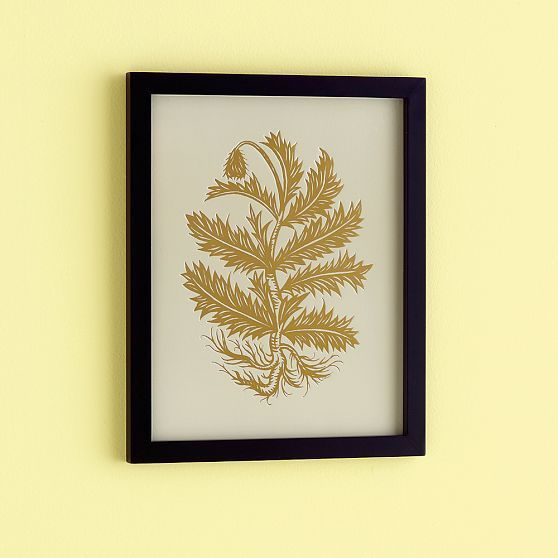 PATCH NYC Framed Wall Art, Thistle