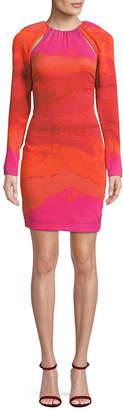 Tracy Reese Gradient Sheath Dress
