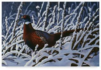 "Goebel Wilhelm 'Ring Neck Pheasant' Canvas Art - 16"" x 24"""
