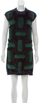Louis Vuitton Mink Fur-Trimmed Mini Dress