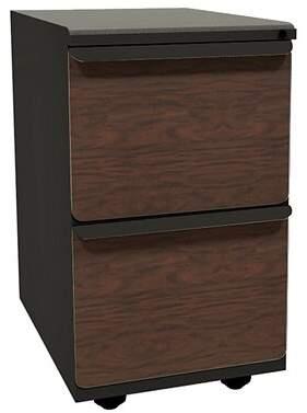 Symple Stuff Weyant 2-Drawer Mobile Vertical Filling Cabinet Symple Stuff