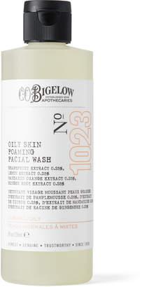 C.O. Bigelow Oily Skin Foaming Facial Wash, 236ml