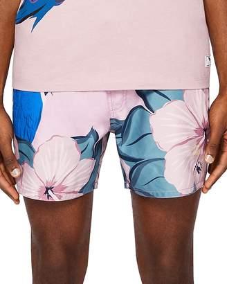 Ted Baker Airo Parrot Print Swim Shorts