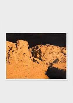 Paul Smith PS-DV-7276 Print - Alia Malley