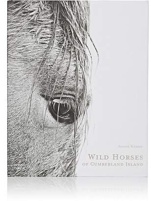 National Book Network Wild Horses Of Cumberland Island