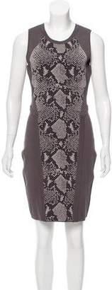 Diane von Furstenberg Franca Paneled Dress
