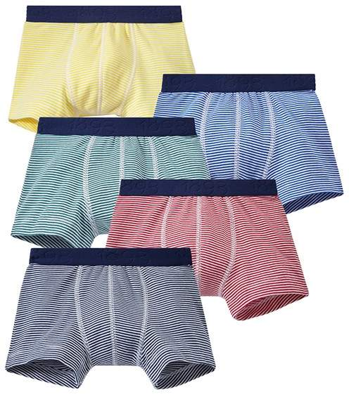 Set Of 5 Boys Boxers With Stripeds