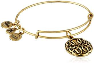 Alex and Ani Path of Life III Expandable Bangle Bracelet