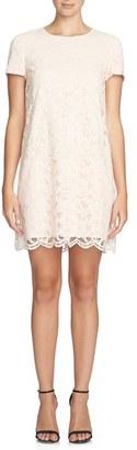 CeCe 'Kayte' Lace Shift Dress $138 thestylecure.com