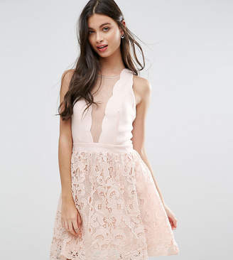 Little Mistress Petite Scallop Skater Dress With Crochet Lace Skirt