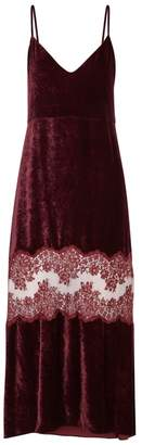 Stella McCartney Plum Lace And Velvet Midi Dress