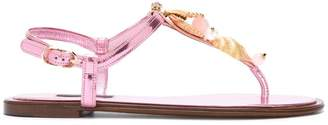 Dolce & Gabbana golden shell sandals