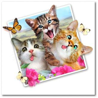 Trademark Fine Art Kitty Picture by Howard Robinson