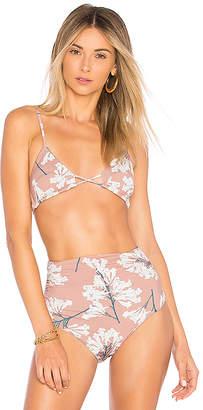 Clube Bossa Apel Bikini Top