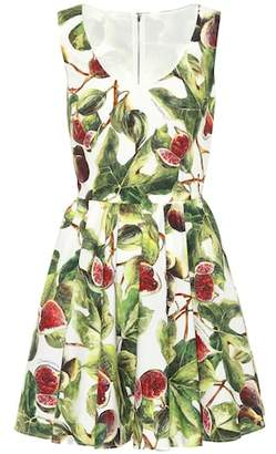 Dolce & Gabbana Fig cotton poplin minidress