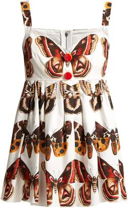 Dolce & Gabbana Butterfly-print cotton top