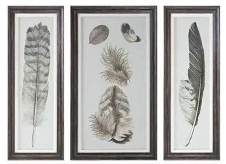 Uttermost Feather Study Framed Wall Art Triptych