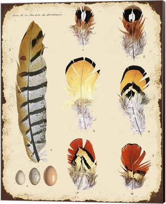 STUDY Metaverse Vintage Feather E By Jean Plout Canvas Art