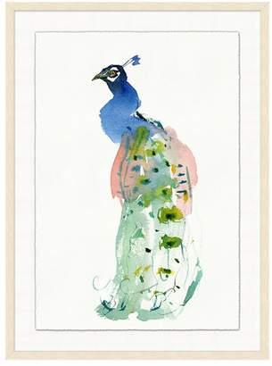Williams-Sonoma Regal Peacock