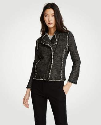 Ann Taylor Petite Tweed Fringe Moto Jacket
