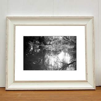 PAUL COOKLIN Alder Carr River, Suffolk Photo Art Print