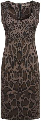 Roberto Cavalli Lynx Shift Dress