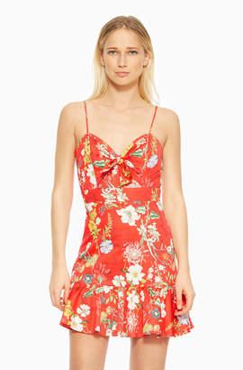 Parker Dany Dress