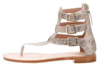 Joie Embossed Buckle Sandals
