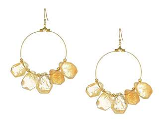 Kenneth Jay Lane Polished Gold Hoop with Citrine Drops Fish Hook Ear Earrings
