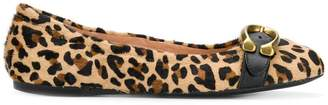 Coach leopard ballerina shoes