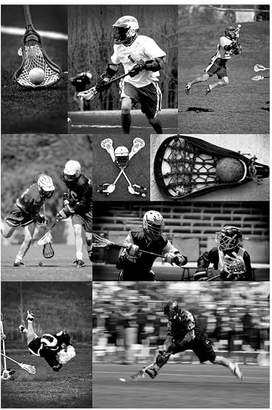 Pottery Barn Teen Lacrosse Collage Wall Mural, 4x6