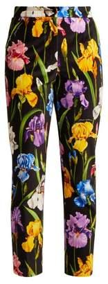 Dolce & Gabbana Iris Print Stretch Cotton Velvet Trousers - Womens - Black Multi