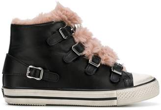 Ash Basket fur sneakers