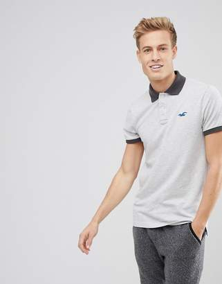 Hollister Stretch Pique Polo Seagull Logo in Light Gray