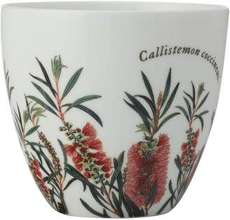 Maxwell & Williams Royal Botanic Gardens Tea Light Holder, Bottlebrush