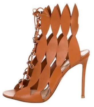Gianvito Rossi Vitello Spice Ankle Boots Vitello Spice Ankle Boots