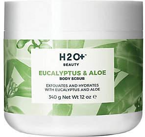 Alöe H2O+ Beauty Eucalyptus & Body Scrub, 12 oz