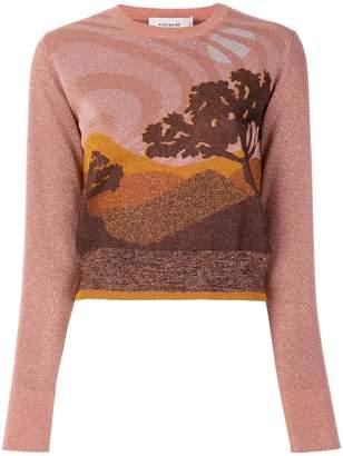 Coach Landscape sweater