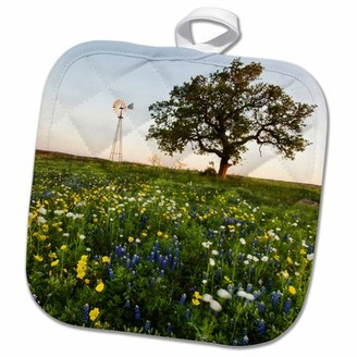 3dRose flowers and windmill in the Texas hill country. - Pot Holder, 8 by 8-inch