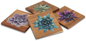 Thirstystone Closeout! Square Wood Succulent Coasters, Set of 4