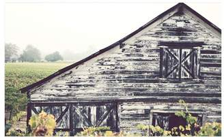 Pottery Barn Weathered Barn Framed Print by Lupen Grainne