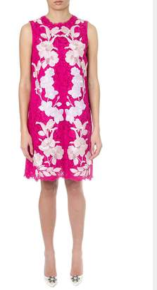 Dolce & Gabbana Fuxia Lace Dress With Floral Applications