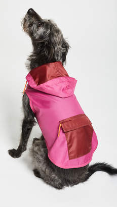 Gift Boutique Pet's Neon Anorak