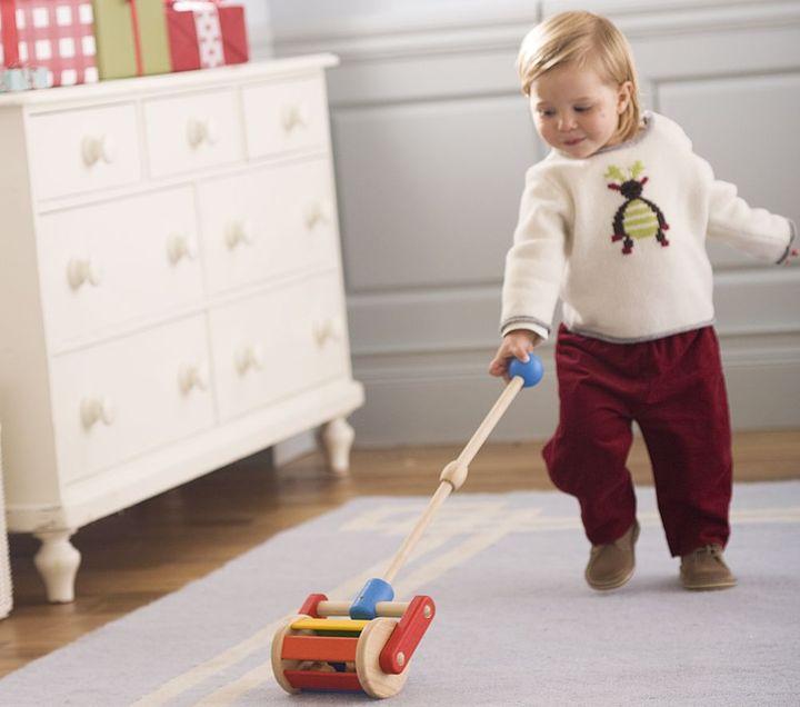 Walk  Roll Pull Toy